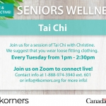 Seniors Wellness - Tai Chi